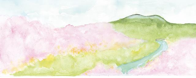 春のかけ紙